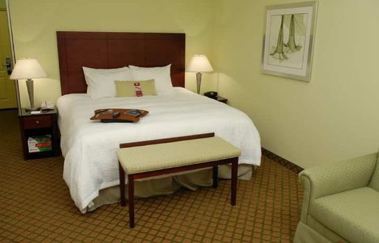 Zimmer Hampton Inn - Suites Orlando-South Lake Buena Vista