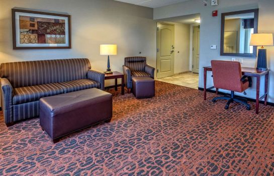 Room Hampton Inn Suites Minneapolis St Paul Arpt-Mall of America