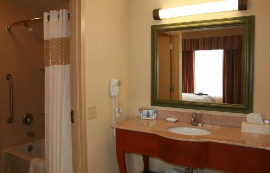 Suite Hampton Inn Omaha West-Lakeside