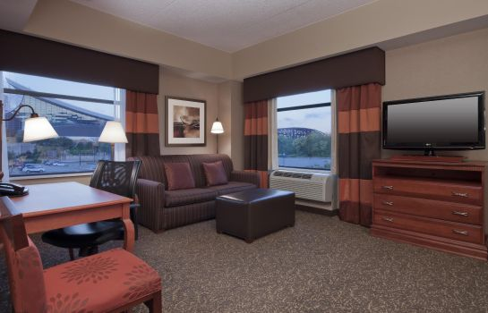 Suite Hampton Inn - Suites Pittsburgh-Downtown