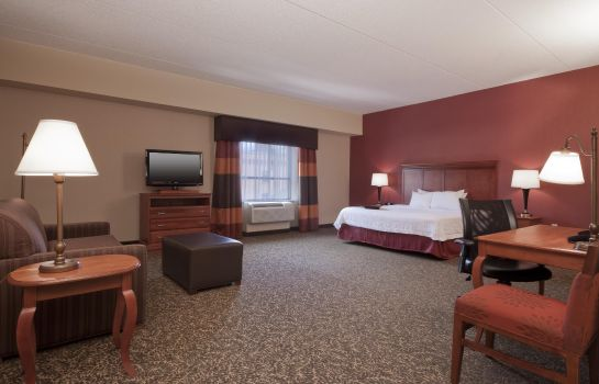 Kamers Hampton Inn - Suites Pittsburgh-Downtown