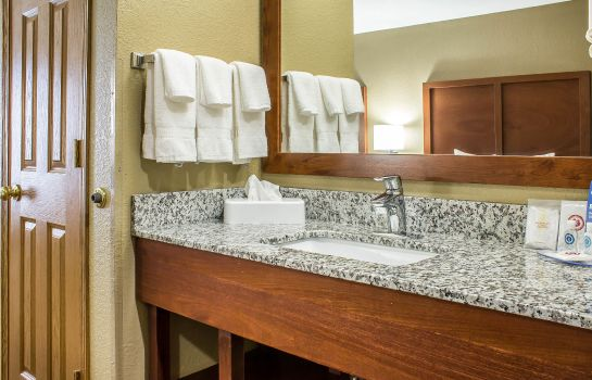 Camera Comfort Inn & Suites Cedar Rapids