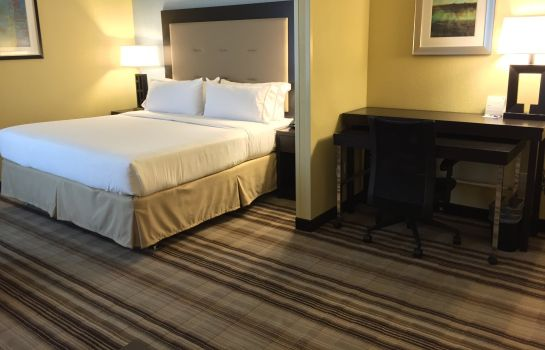 Suite Holiday Inn Express CHICAGO NW - ARLINGTON HEIGHTS
