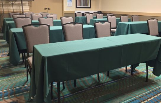Conference room Holiday Inn Express CHICAGO NW - ARLINGTON HEIGHTS