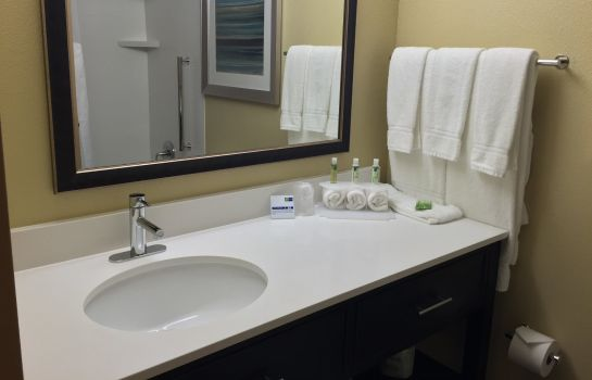 Room Holiday Inn Express CHICAGO NW - ARLINGTON HEIGHTS