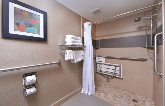 Zimmer Holiday Inn LITTLE ROCK WEST - CHENAL PKWY