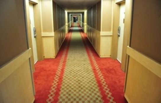 Hol hotelowy RED CARPET INN AND SUITES SUDB
