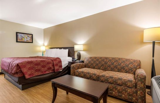 Zimmer Econo Lodge Gaffney