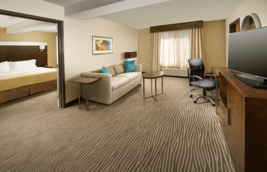 Zimmer Holiday Inn EL PASO AIRPORT
