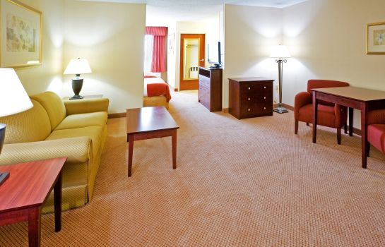 Suite Holiday Inn Express & Suites IRVING CONV CTR - LAS COLINAS