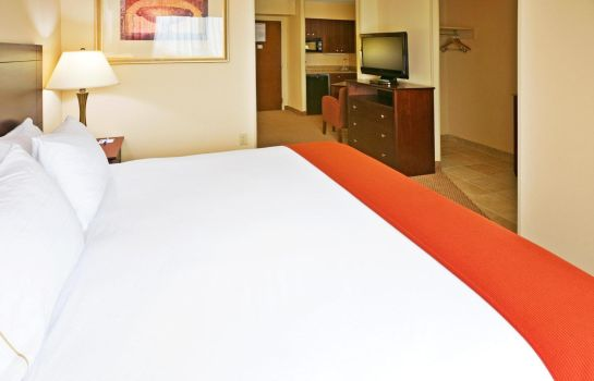 Room Holiday Inn Express & Suites IRVING CONV CTR - LAS COLINAS