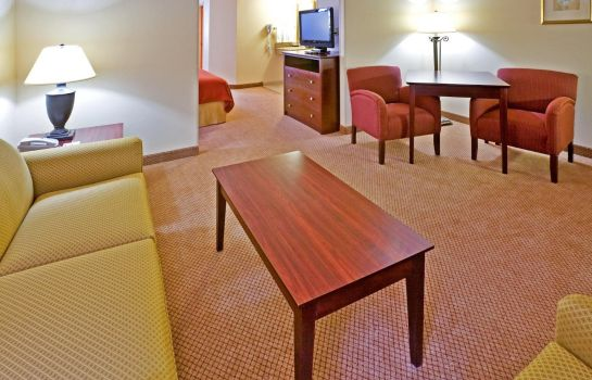 Zimmer Holiday Inn Express & Suites IRVING CONV CTR - LAS COLINAS