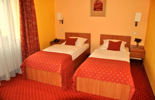 Double room (standard) Solny