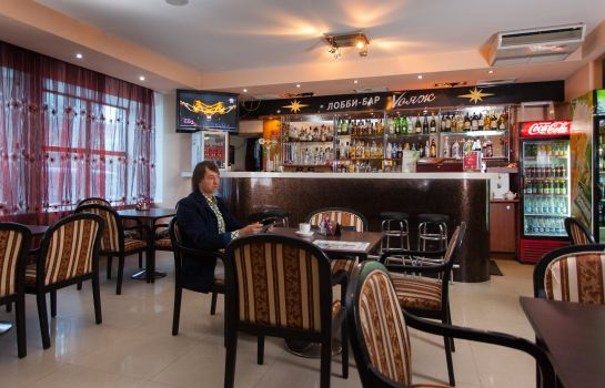 Hotel bar Amaks Tourist