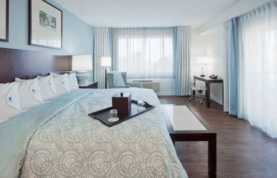 Zimmer Hotel Indigo FT MYERS DTWN RIVER DISTRICT
