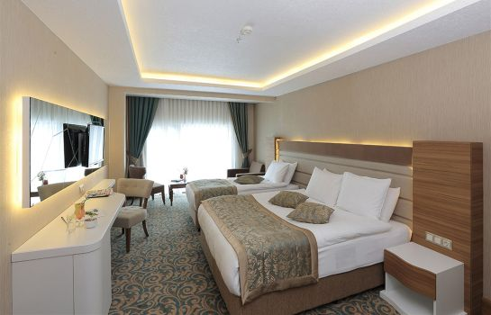 Chambre double (standard) Convention Center Çam Thermal Resort & Spa