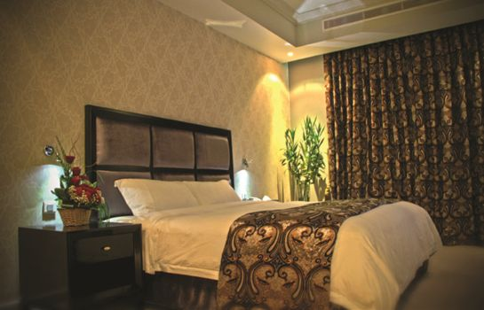 Double room (standard) Plaza Inn Doha