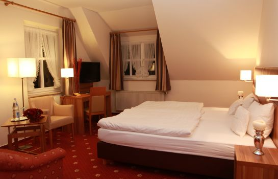 Double room (superior) Morhoff Waldhotel