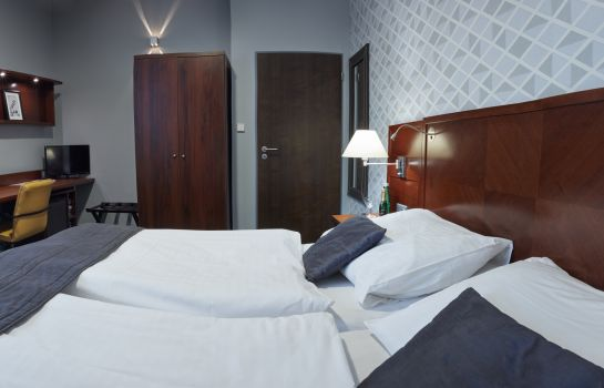 Double room (standard) Falconi Pension