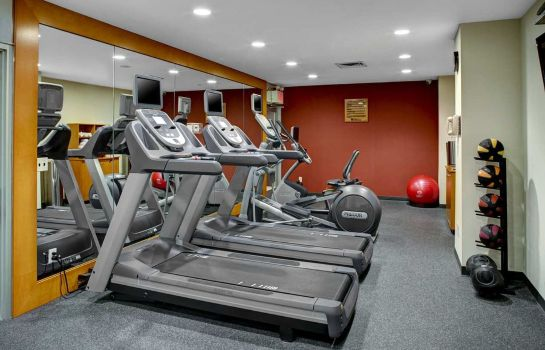Info Hilton Garden Inn New York-Manhattan-Chelsea