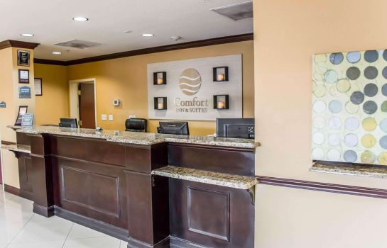 Lobby Comfort Inn & Suites Northeast - Gateway