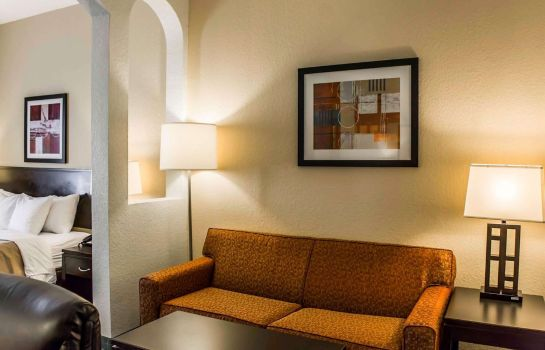 Suite Comfort Inn & Suites Northeast - Gateway