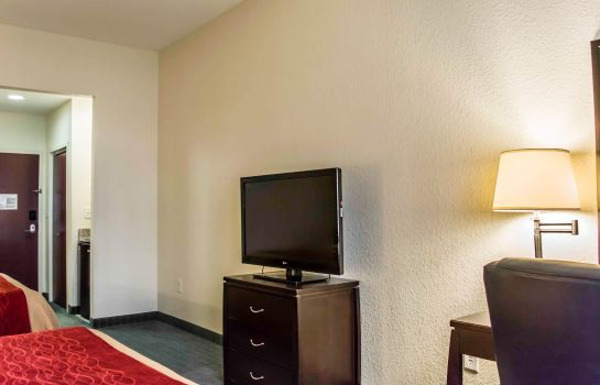 Room Comfort Inn & Suites Northeast - Gateway