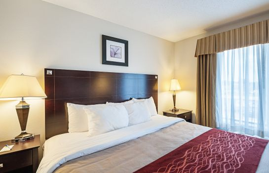 Zimmer Comfort Inn & Suites Cambridge