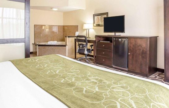 Suite Comfort Suites Lexington