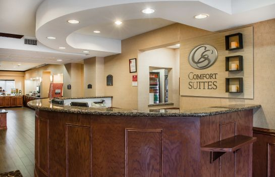 Lobby Comfort Suites Near Texas A&M - Corpus Christi