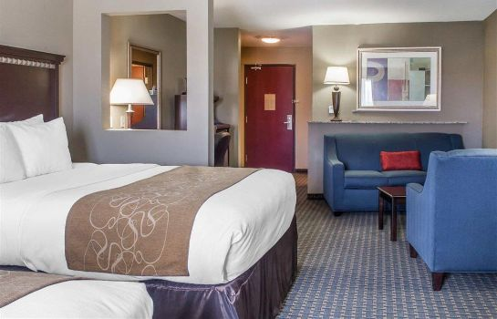 Suite Comfort Suites Near Texas A and M - Corp
