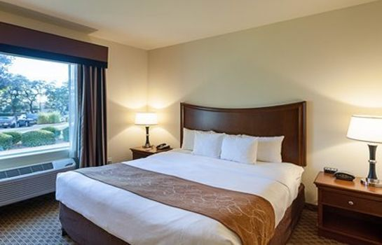 Suite Comfort Suites San Antonio North - Stone Oak