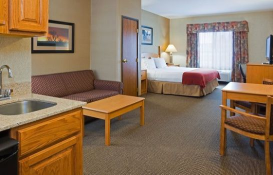 Suite Holiday Inn Express & Suites CUSTER