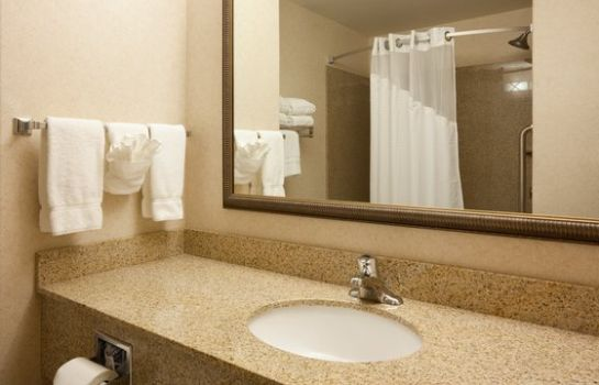 Zimmer Holiday Inn Express & Suites CUSTER