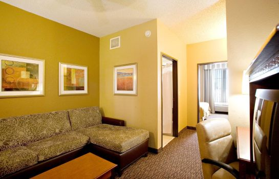 Suite Holiday Inn Express & Suites SAN ANTONIO-DTWN MARKET AREA
