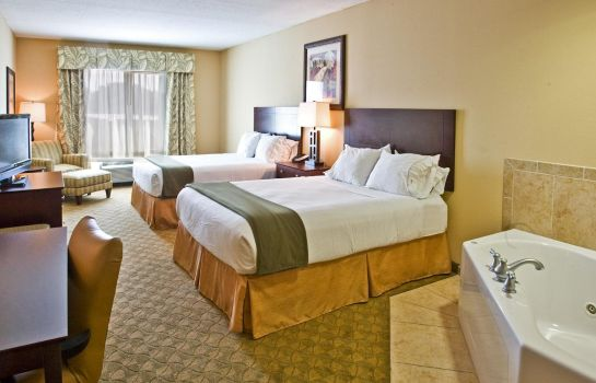 Suite Holiday Inn Express & Suites TAMPA -USF-BUSCH GARDENS