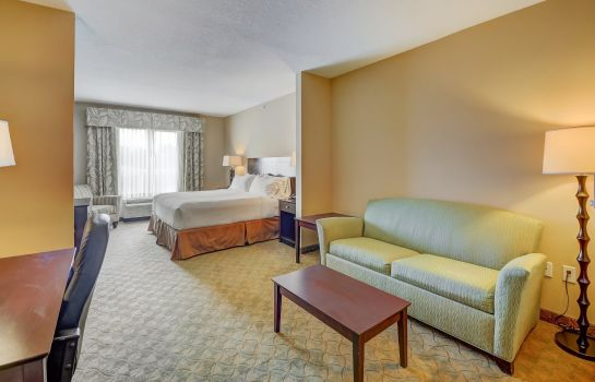 Zimmer Holiday Inn Express & Suites TAMPA -USF-BUSCH GARDENS