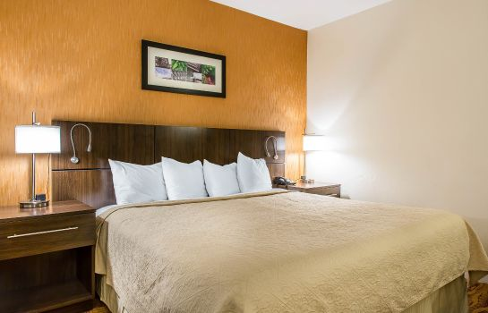 Pokój Quality Inn & Suites Middletown - Newport