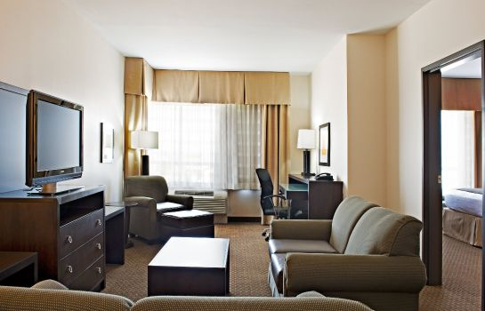 Suite Holiday Inn DALLAS-FORT WORTH AIRPORT S