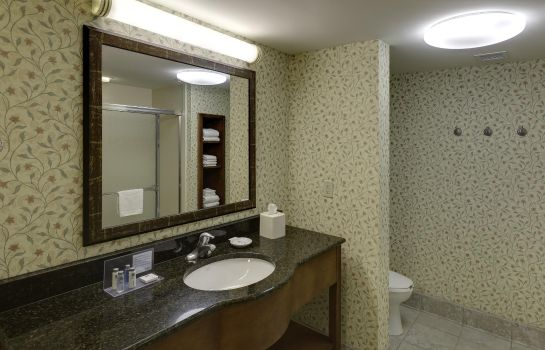 Zimmer Hampton Inn - Suites Columbus Polaris