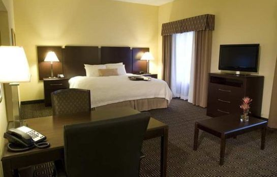 Suite Hampton Inn - Suites Orlando-John Young Pkwy-S Park