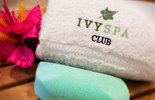 Info Hotel Ivy a Luxury Collection Hotel Minneapolis