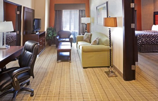 Suite Staybridge Suites DFW AIRPORT NORTH