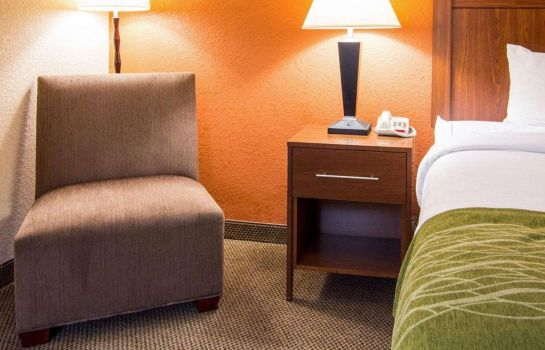 Suite Comfort Inn and Suites Convention Center