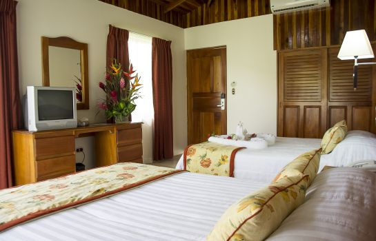 Chambre double (standard) Arenal Paraiso Resort and Spa