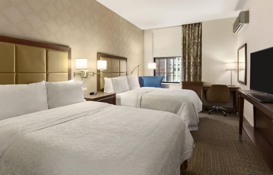 Kamers Hampton Inn Chicago Downtown-N Loop-Michigan Ave I