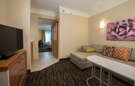 Zimmer SpringHill Suites San Antonio Downtown/Riverwalk Area