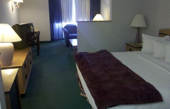 Zimmer Quality Inn and Suites Denver Airport -
