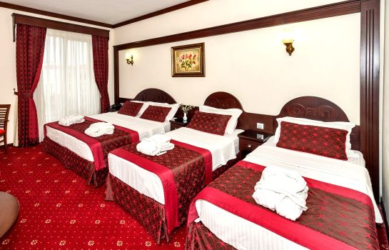 Four-bed room Gulhane Park Hotel