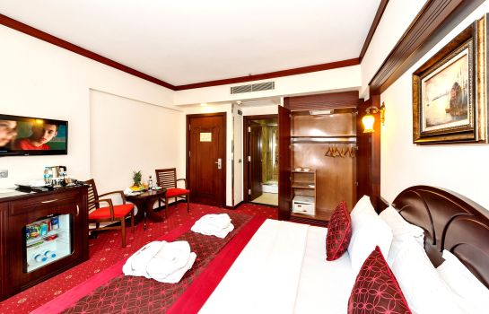 Single room (standard) Gulhane Park Hotel